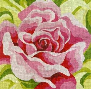 PR81- Pink Rose